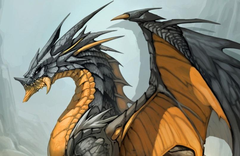 dragon essay writer