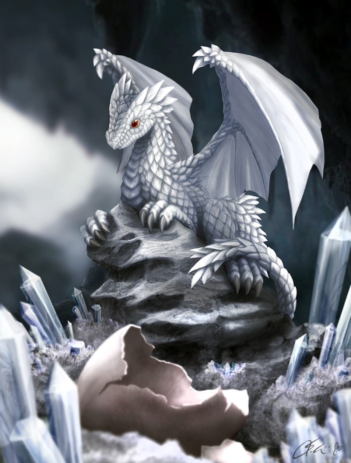 white_dragon_hatchling_by_dashase