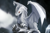white_dragon_hatchling_by_dashase (detail)