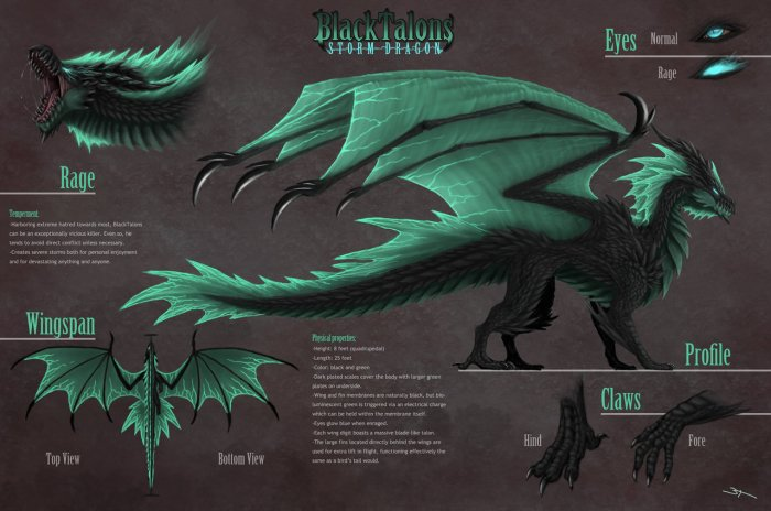 blacktalons_reference_sheet_by_blacktalons