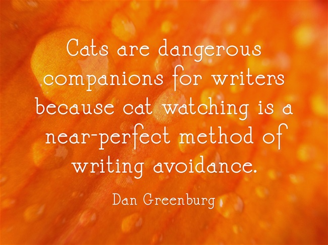 Dan Greenburg Quote - Cats