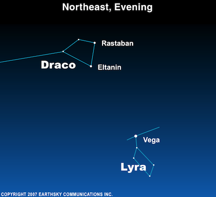 Draco Constellation Detail (Rastaban and Eltanin)