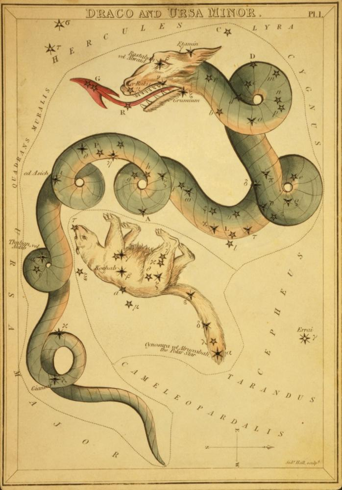 Draco & Ursa Minor Constellation Image