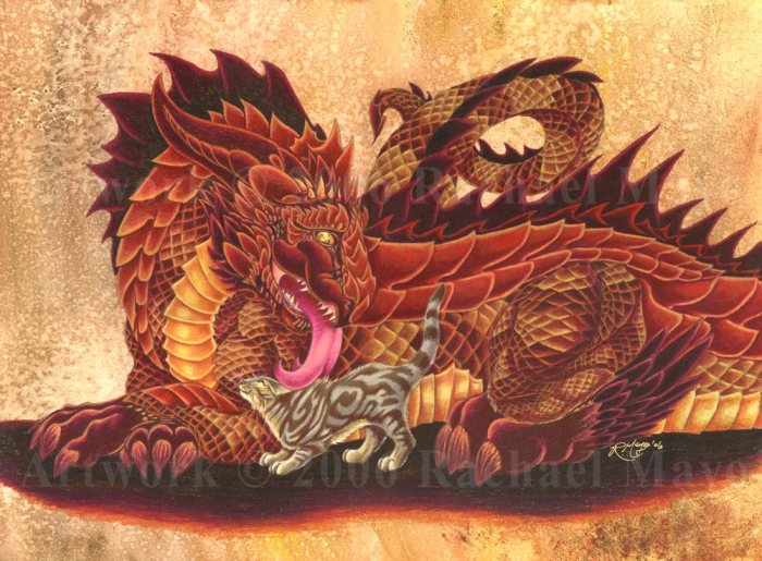 Dragon and Fluffykins by Rachel Mayo