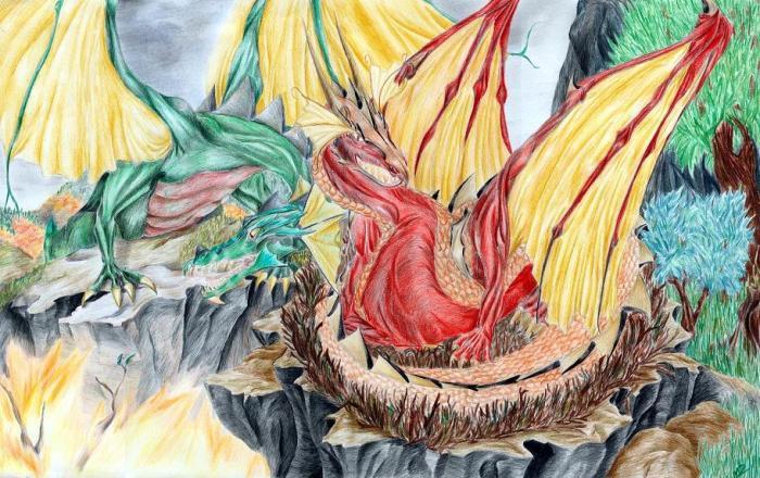 old___dragon_pair_by_mieronna