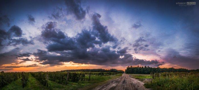cool__windy_autumn_sunset_by_norbertkocsis