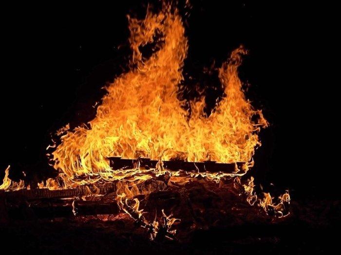 bonfire_dragon_by_artie3d