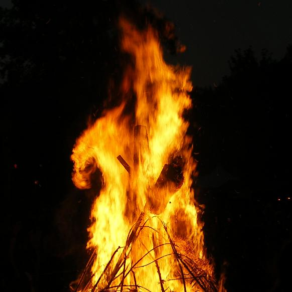 fire_dragon_by_lottjuh