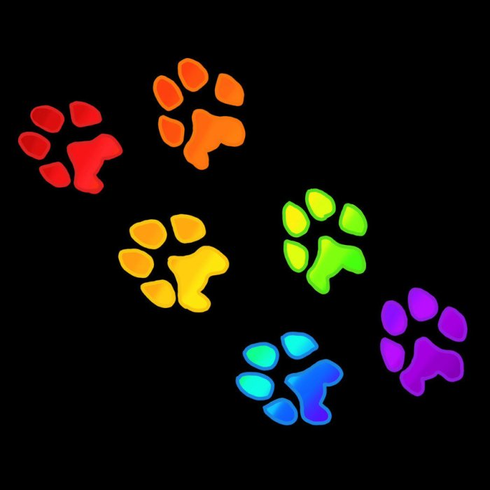 rainbow_paw_prints__by_winters_hart
