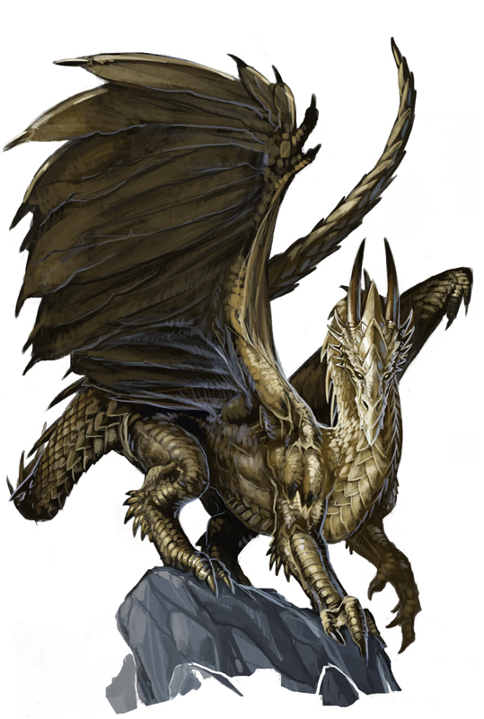 young_gold_dragon_by_benwootten
