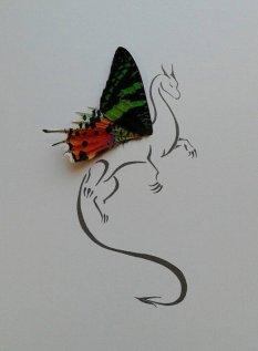 Isms Butterflies 05