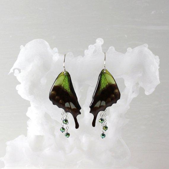 Isms Butterflies 07