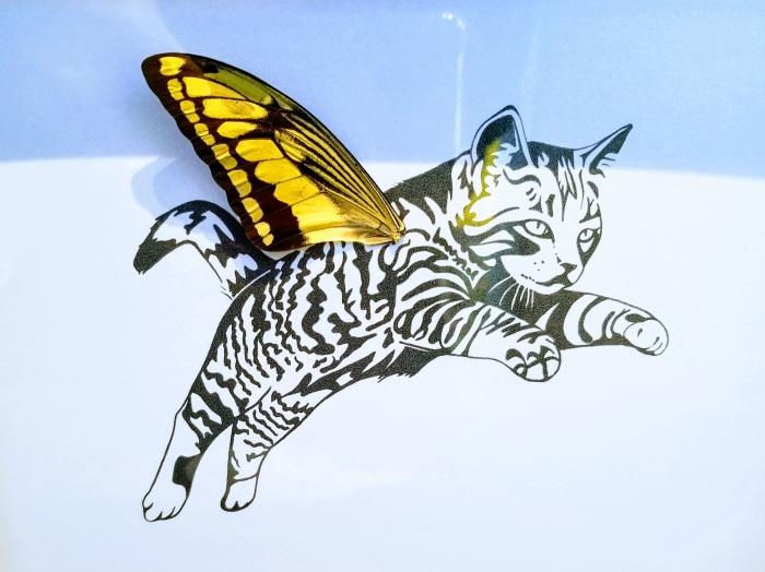 Isms Butterfly Art 02