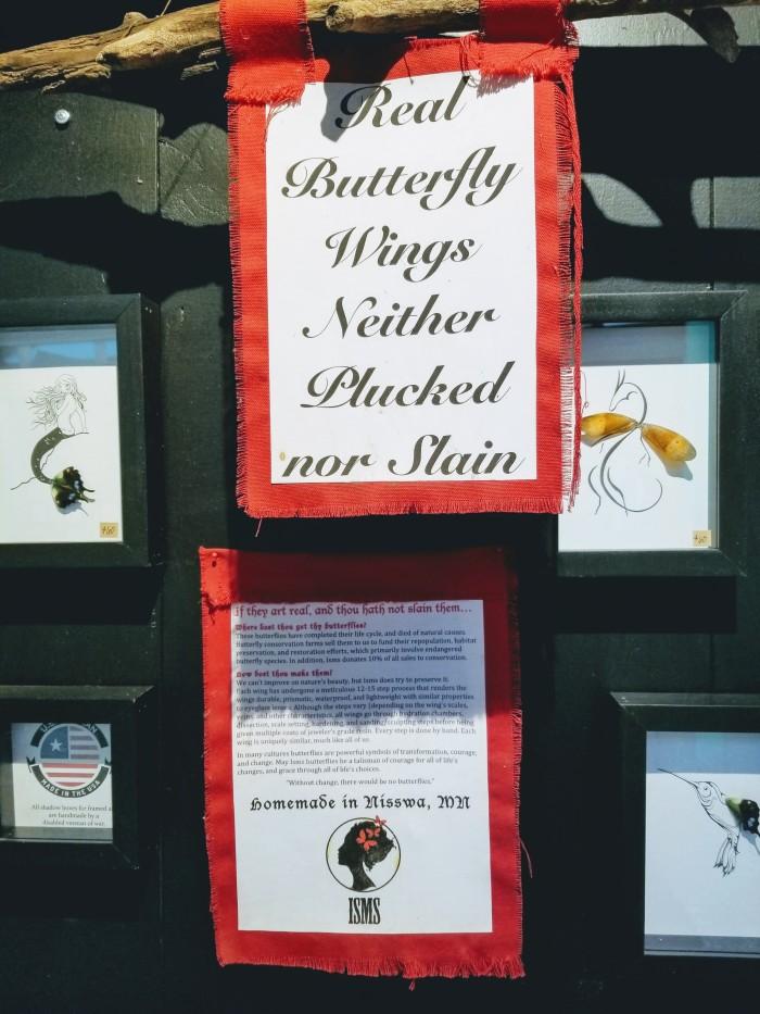 Isms Butterfly Art 06
