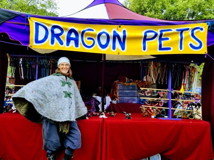 Dragon Pets 02